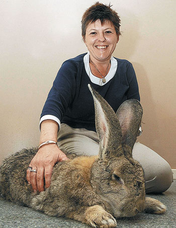 Benny the longest rabbit