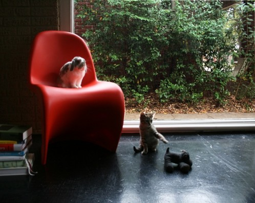 Eames, Charlotte, and Hippo