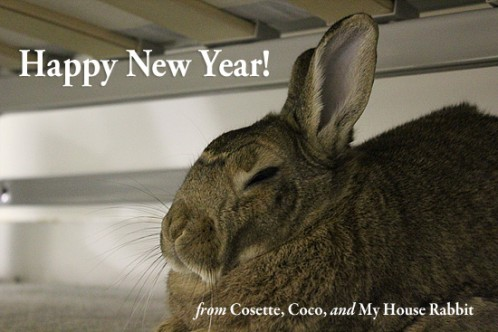 Happy New Year!  From Cosette, Coco, and My House Rabbit