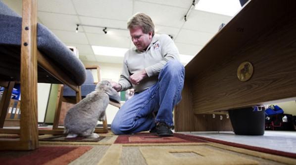John C. Doub feeds Rosemary the rabbit at Virginia Rabbit Inc.