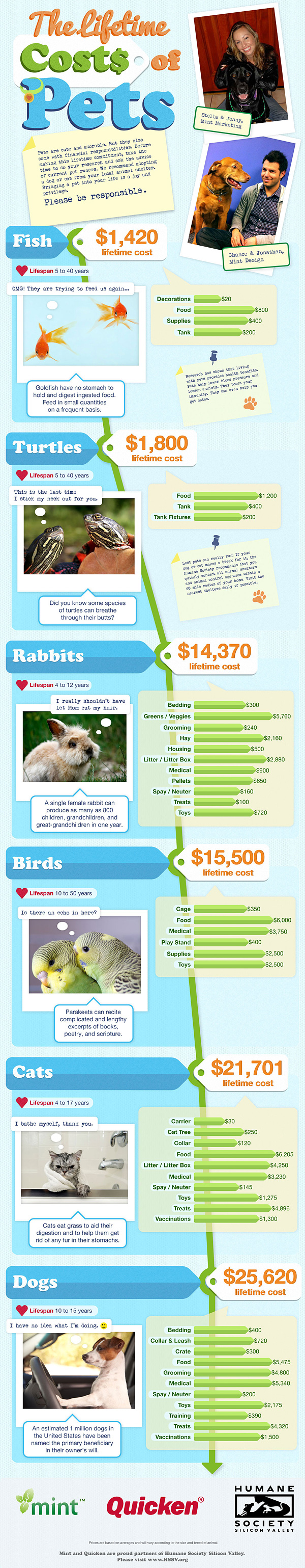 Lifetime Costs of Pet Ownership Infographic