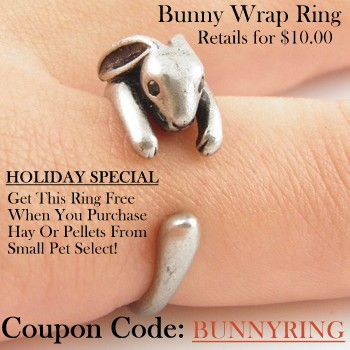 Bunny Ring from Small Pet Select
