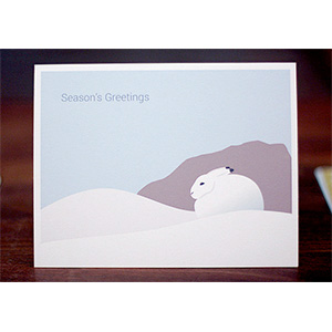 Arctic Hare Christmas Cards