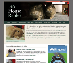 My House Rabbit Website Screenshot