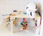 Activity Zone Rabbit Toy