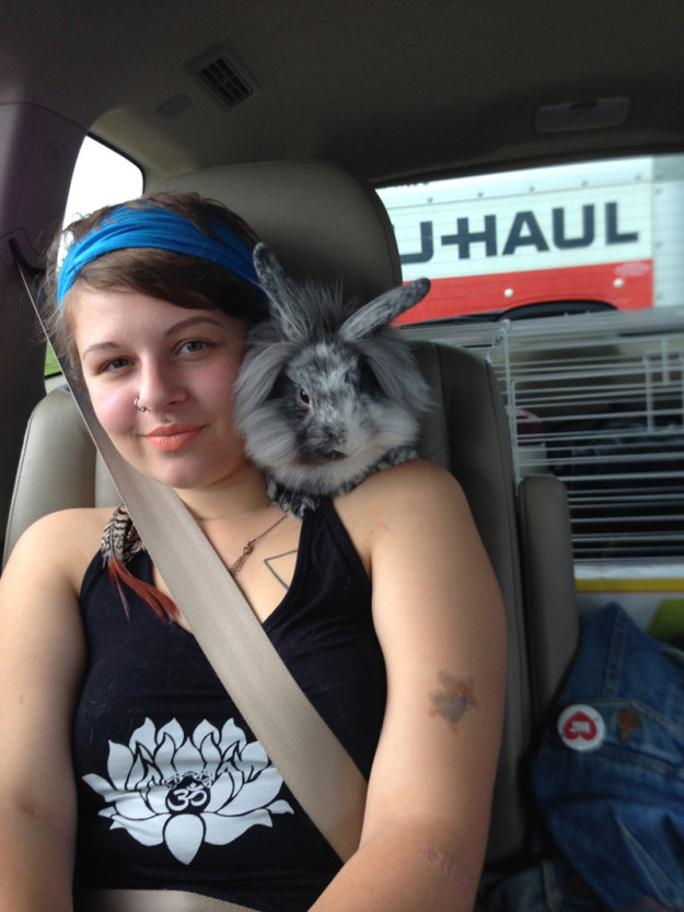 Rabbit on shoulder
