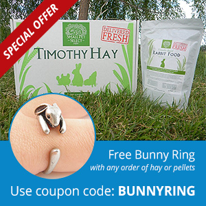 Free Bunny Ring with hay purchase - coupon BUNNYRING