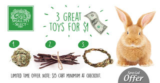 3 Great Toys for $1